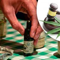 Colombia decreta ley para uso Medicinal del Cannabis